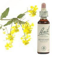 21-mustard